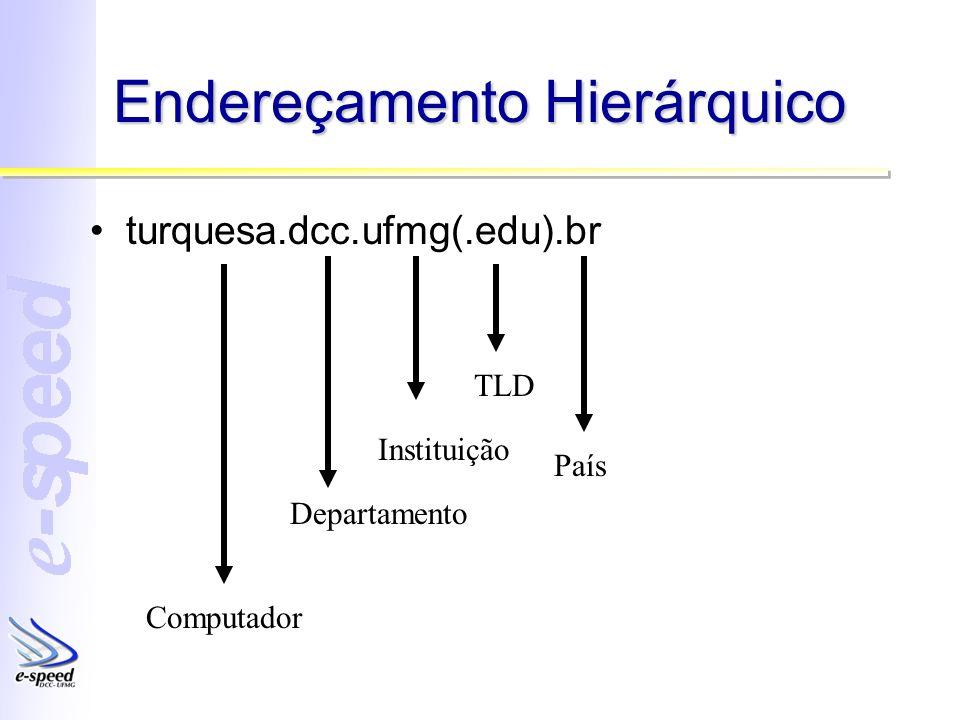 Endereçamento Hierárquico turquesa.dcc.ufmg(.edu).br País Instituição Departamento Computador TLD
