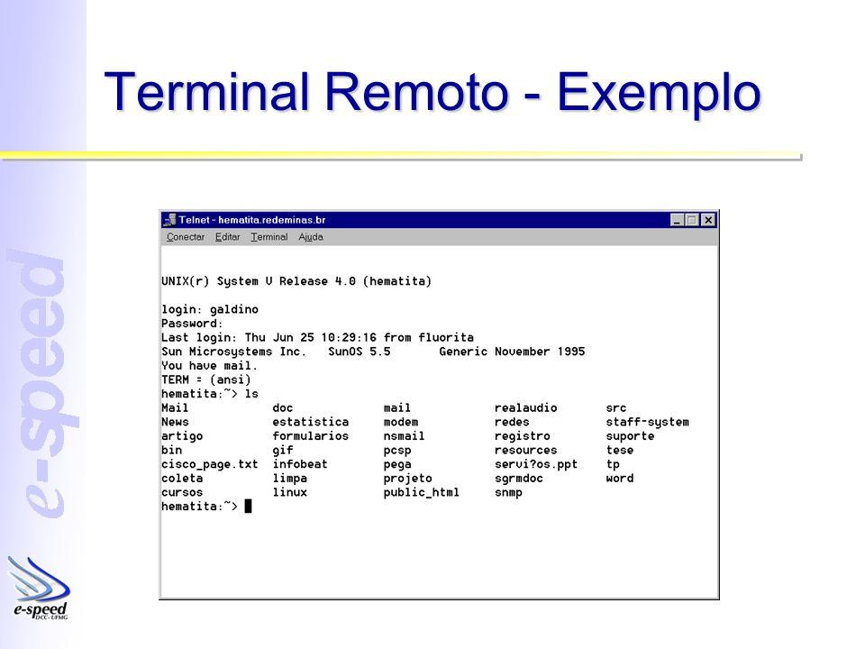Terminal Remoto - Exemplo