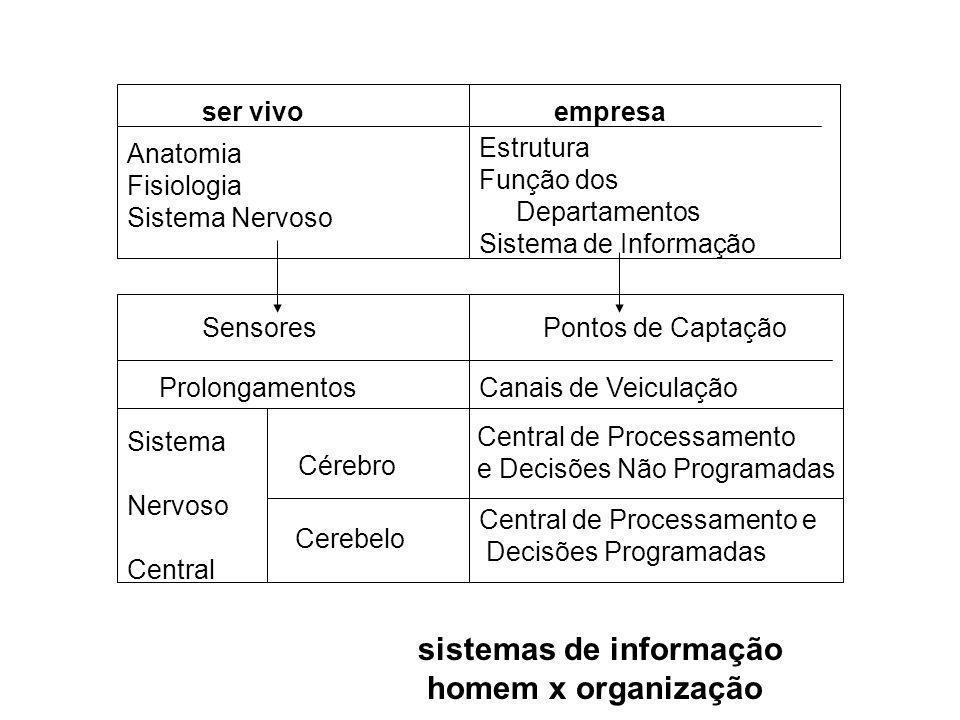ser vivoempresa Anatomia Fisiologia Sistema Nervoso Estrutura Função dos Departamentos Sistema de Informação SensoresPontos de Captação Prolongamentos