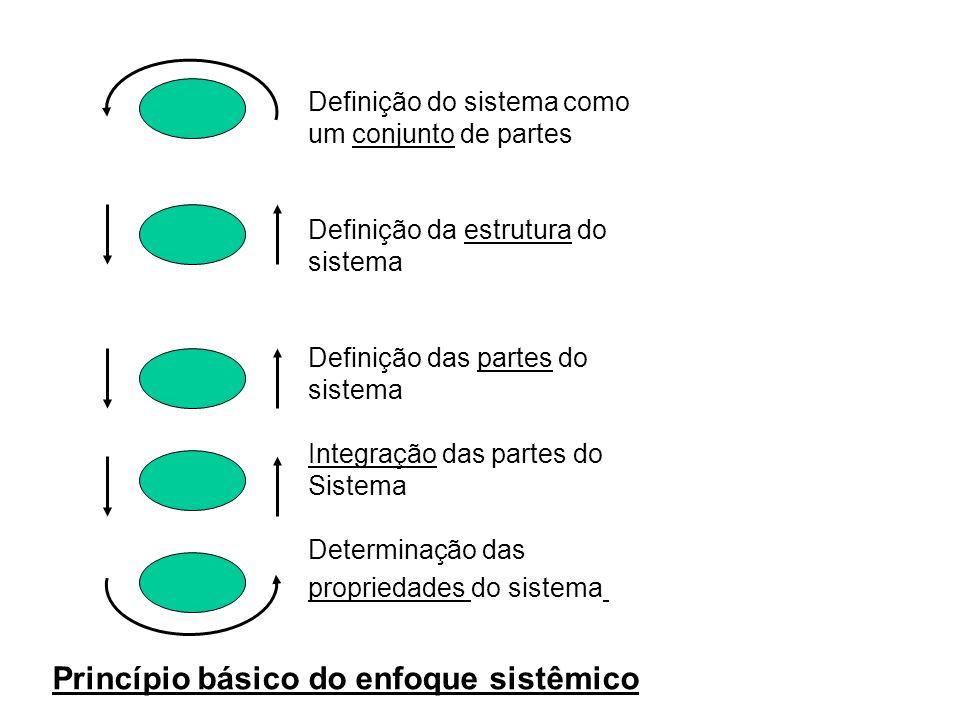 Definição do sistema como um conjunto de partes Definição da estrutura do sistema Definição das partes do sistema Integração das partes do Sistema Determinação das propriedades do sistema Princípio básico do enfoque sistêmico