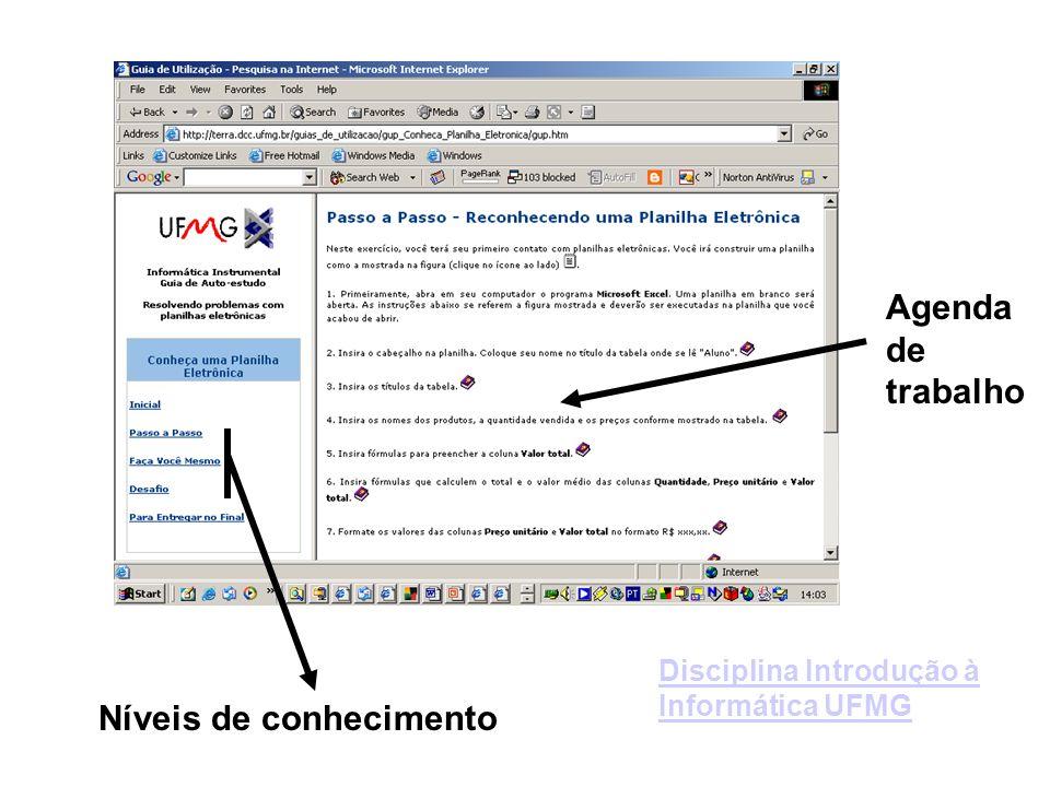 Agenda de trabalho Níveis de conhecimento Disciplina Introdução à Informática UFMG