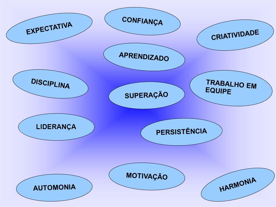 EXPECTATIVA HARMONIA TRABALHO EM EQUIPE CRIATIVIDADE AUTOMONIA SUPERAÇÃO LIDERANÇA DISCIPLINA APRENDIZADO MOTIVAÇÃO CONFIANÇA PERSISTÊNCIA