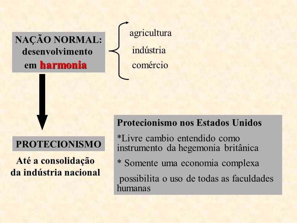 NAÇÃO NORMAL: desenvolvimento harmonia em harmonia agricultura indústria comércio PROTECIONISMO Até a consolidação da indústria nacional Protecionismo