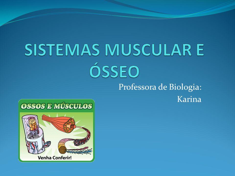 Professora de Biologia: Karina