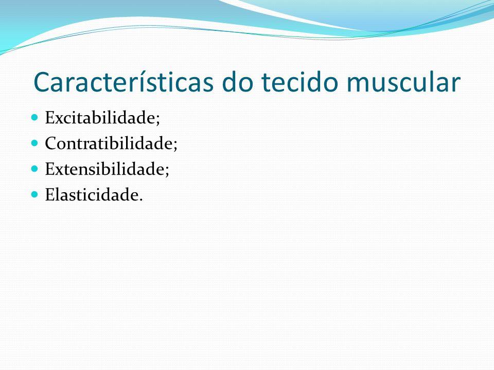 Características do tecido muscular Excitabilidade; Contratibilidade; Extensibilidade; Elasticidade.