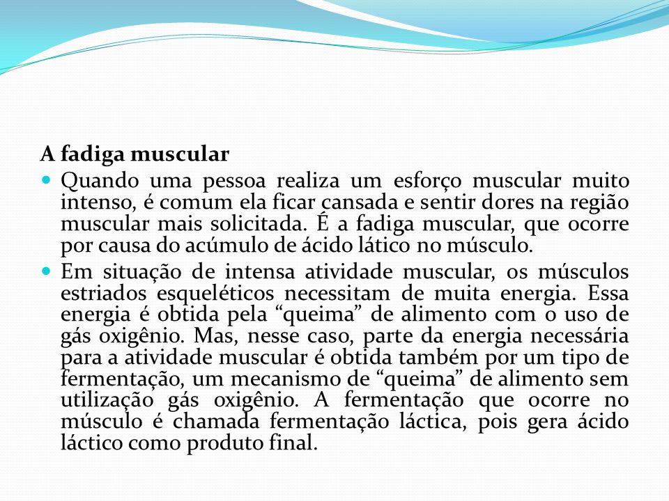 A fadiga muscular Quando uma pessoa realiza um esforço muscular muito intenso, é comum ela ficar cansada e sentir dores na região muscular mais solici