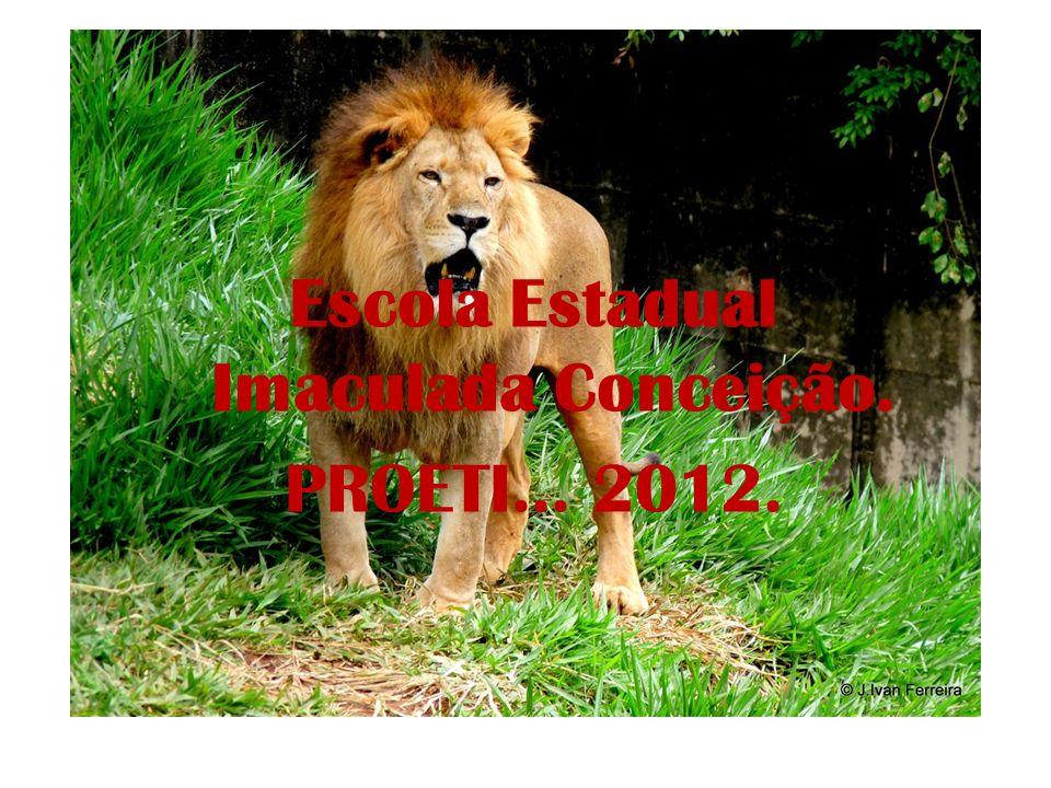 Projeto Jardim Zoológico Os animais Público- alvo: alunos do 3º ano ao 8º ano do ensino fundamental.