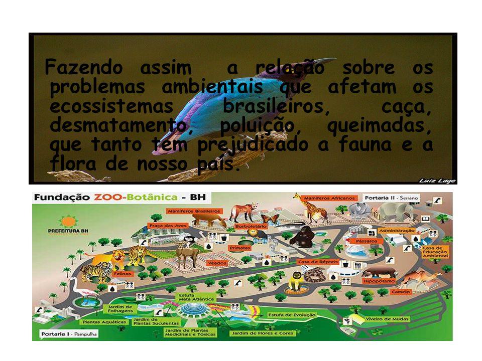 Fazendo assim a relação sobre os problemas ambientais que afetam os ecossistemas brasileiros, caça, desmatamento, poluição, queimadas, que tanto tem p