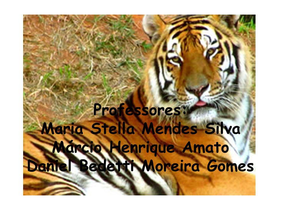 Professores: Maria Stella Mendes Silva Márcio Henrique Amato Daniel Bedetti Moreira Gomes