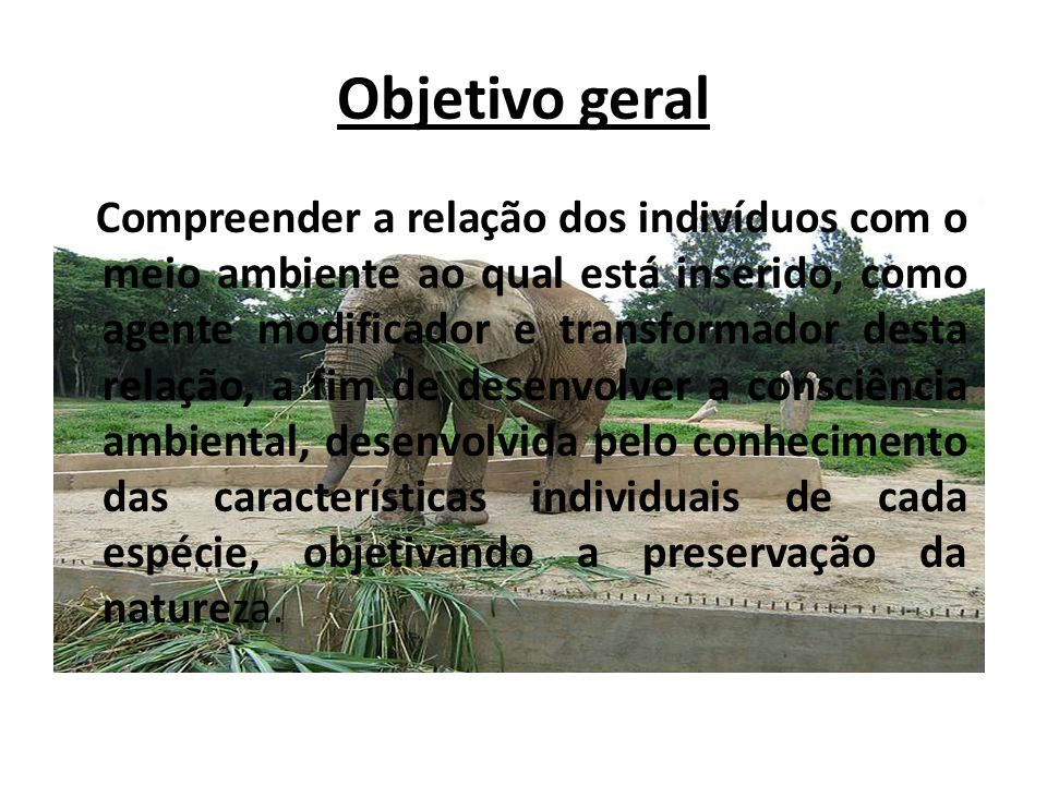 Objetivo geral Compreender a relação dos indivíduos com o meio ambiente ao qual está inserido, como agente modificador e transformador desta relação,
