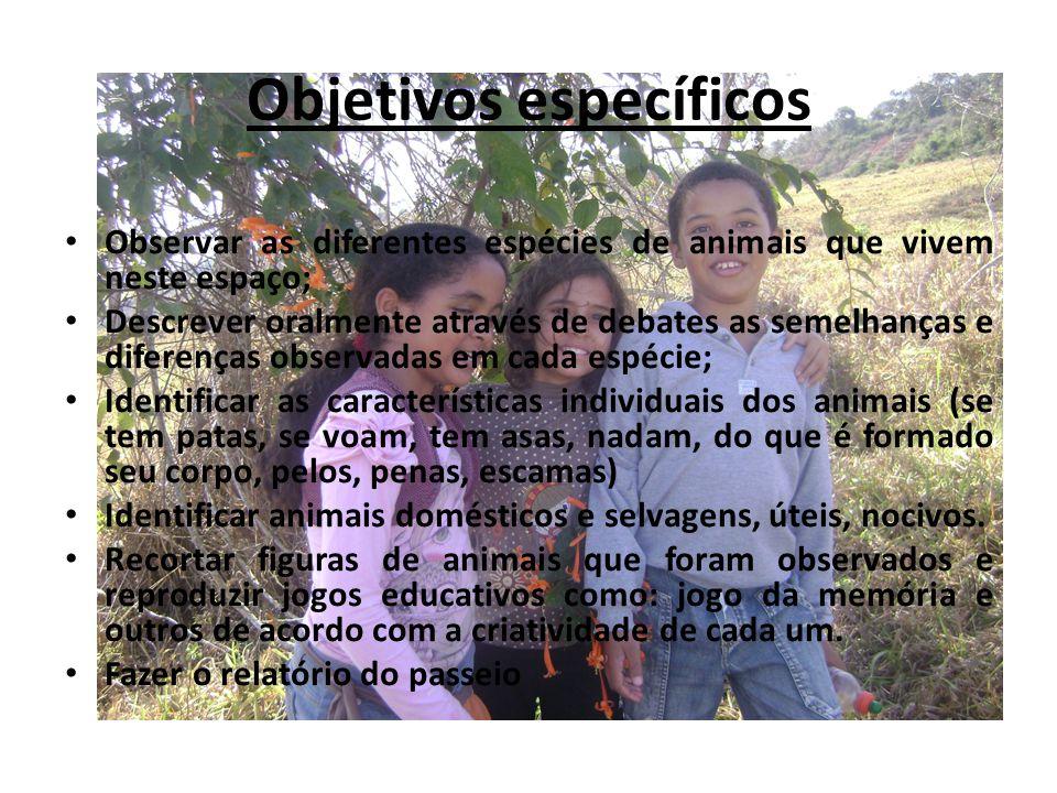 Lista de animais em extinção no Brasil 1- Cervo-do-pantanal: Animal dócil e grandalhão, torna-se um alvo fácil para os caçadores em busca de sua galhada, usada como decoração.