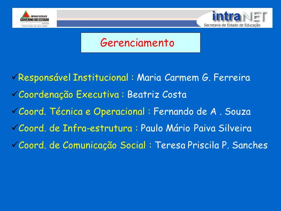 Gerenciamento Responsável Institucional : Maria Carmem G. Ferreira Coordenação Executiva : Beatriz Costa Coord. Técnica e Operacional : Fernando de A.