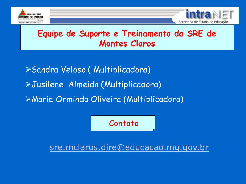 Equipe de Suporte e Treinamento da SRE de Montes Claros Sandra Veloso ( Multiplicadora) Jusilene Almeida (Multiplicadora) Maria Orminda Oliveira (Mult