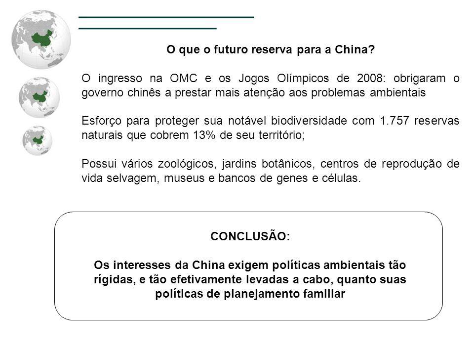 O que o futuro reserva para a China? O ingresso na OMC e os Jogos Olímpicos de 2008: obrigaram o governo chinês a prestar mais atenção aos problemas a