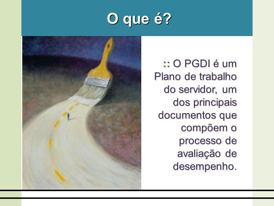 :: O PGDI é um Plano de trabalho do servidor, um dos principais documentos que compõem o processo de avaliação de desempenho. O que é?