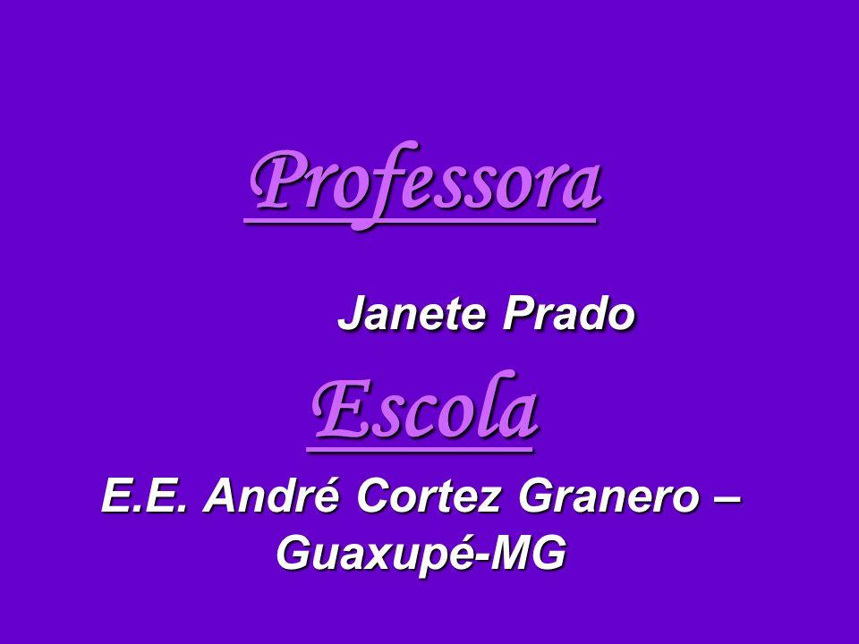 Professora Janete Prado Escola E.E. André Cortez Granero – Guaxupé-MG