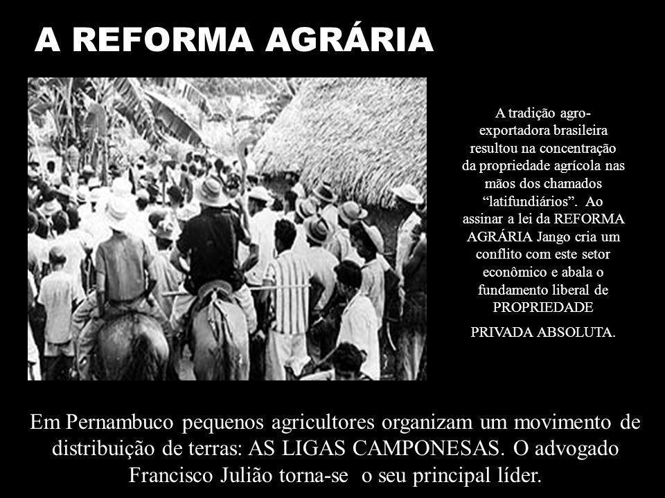 A REFORMA AGRÁRIA A tradição agro- exportadora brasileira resultou na concentração da propriedade agrícola nas mãos dos chamados latifundiários.