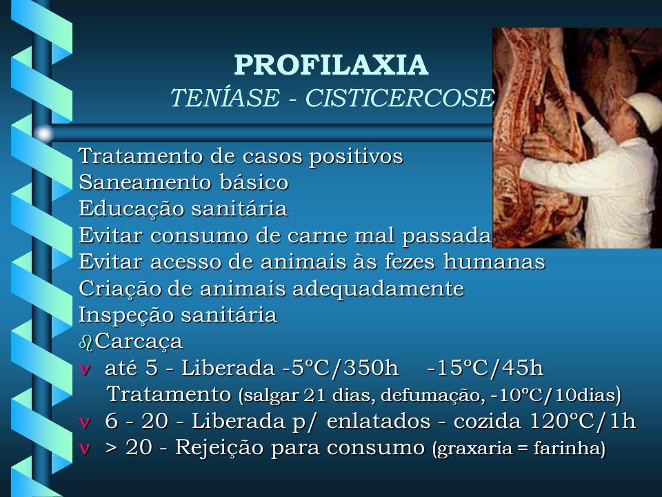 Tratamento de casos positivos Saneamento básico Educação sanitária Evitar consumo de carne mal passada Evitar acesso de animais às fezes humanas Criação de animais adequadamente Inspeção sanitária Carcaça Carcaça até 5 - Liberada -5ºC/350h -15ºC/45h até 5 - Liberada -5ºC/350h -15ºC/45h Tratamento (salgar 21 dias, defumação, -10ºC/10dias ) Tratamento (salgar 21 dias, defumação, -10ºC/10dias ) 6 - 20 - Liberada p/ enlatados - cozida 120ºC/1h 6 - 20 - Liberada p/ enlatados - cozida 120ºC/1h > 20 - Rejeição para consumo (graxaria = farinha) > 20 - Rejeição para consumo (graxaria = farinha) PROFILAXIA TENÍASE - CISTICERCOSE