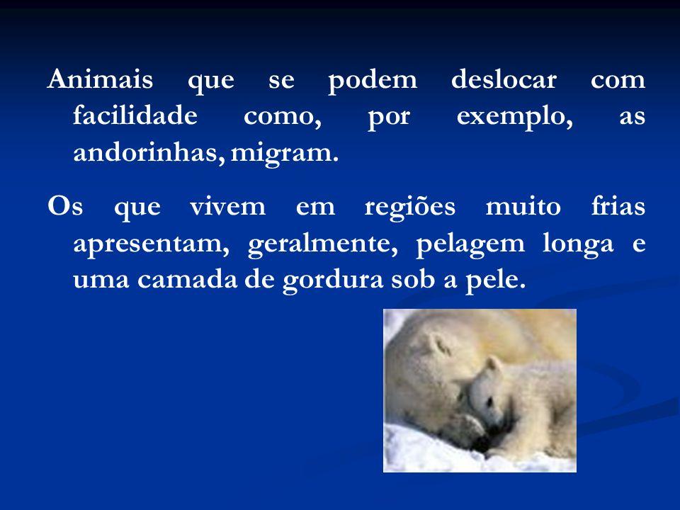 Animais que se podem deslocar com facilidade como, por exemplo, as andorinhas, migram. Os que vivem em regiões muito frias apresentam, geralmente, pel