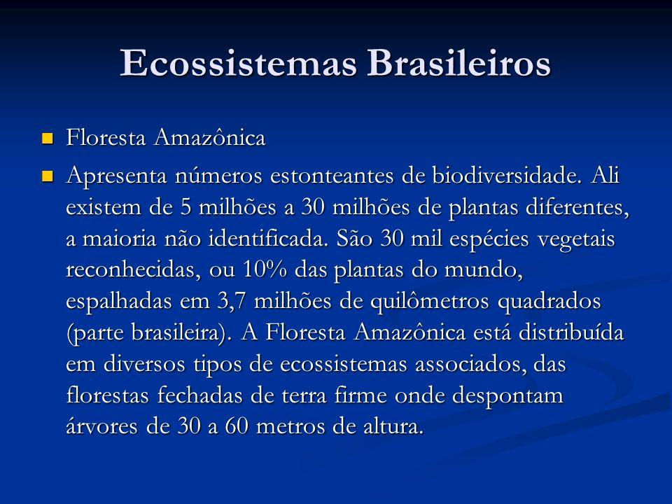 Ecossistemas Brasileiros Floresta Amazônica Floresta Amazônica Apresenta números estonteantes de biodiversidade. Ali existem de 5 milhões a 30 milhões