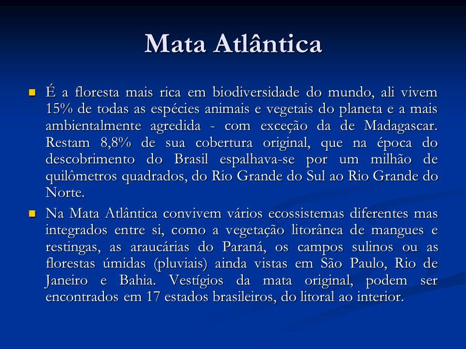 Mata Atlântica É a floresta mais rica em biodiversidade do mundo, ali vivem 15% de todas as espécies animais e vegetais do planeta e a mais ambientalm