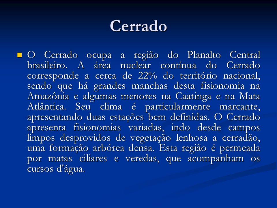 Cerrado O Cerrado ocupa a região do Planalto Central brasileiro. A área nuclear contínua do Cerrado corresponde a cerca de 22% do território nacional,