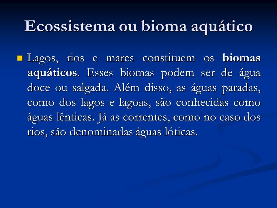 Ecossistema ou bioma aquático Lagos, rios e mares constituem os biomas aquáticos. Esses biomas podem ser de água doce ou salgada. Além disso, as águas