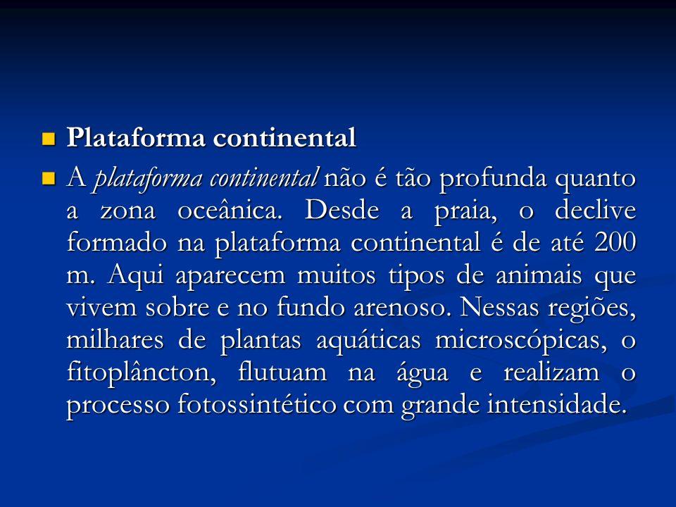 Plataforma continental Plataforma continental A plataforma continental não é tão profunda quanto a zona oceânica. Desde a praia, o declive formado na