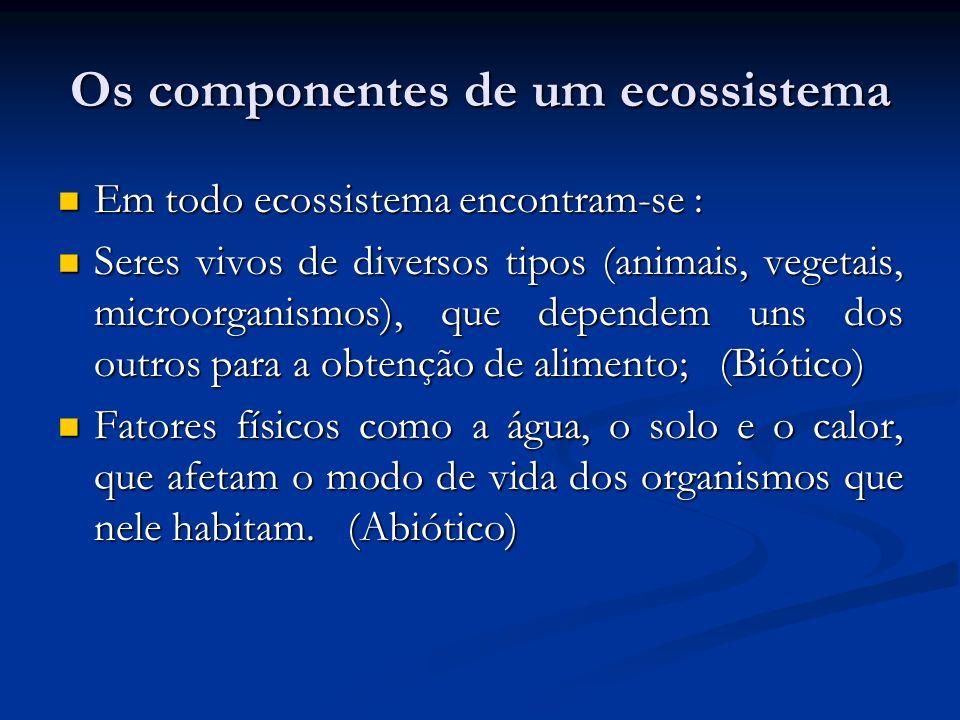 Os componentes de um ecossistema Em todo ecossistema encontram-se : Em todo ecossistema encontram-se : Seres vivos de diversos tipos (animais, vegetai
