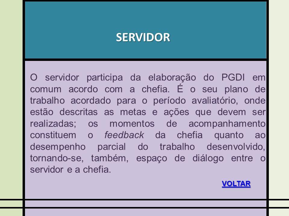 SERVIDOR O servidor participa da elaboração do PGDI em comum acordo com a chefia. É o seu plano de trabalho acordado para o período avaliatório, onde
