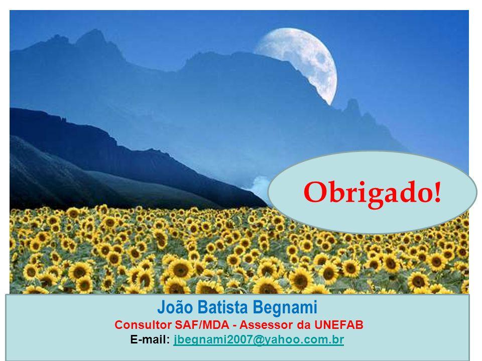 João Batista Begnami Consultor SAF/MDA - Assessor da UNEFAB E-mail: jbegnami2007@yahoo.com.brjbegnami2007@yahoo.com.br Obrigado!