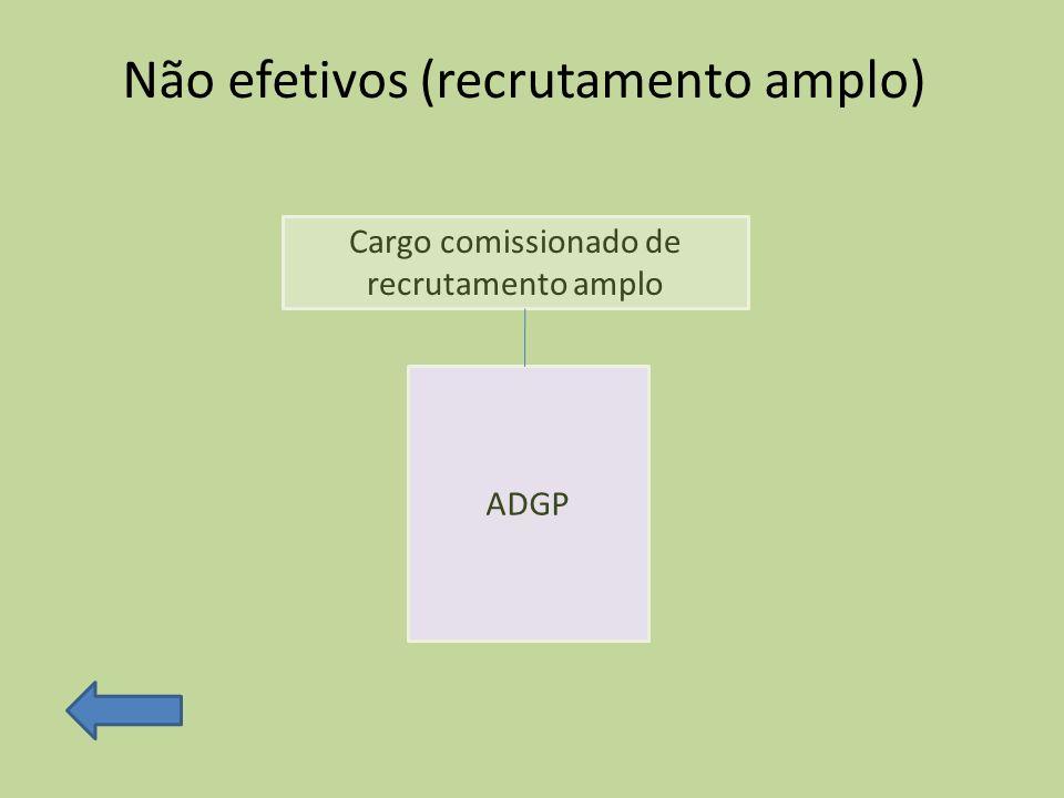 Não efetivos (recrutamento amplo) Cargo comissionado de recrutamento amplo ADGP