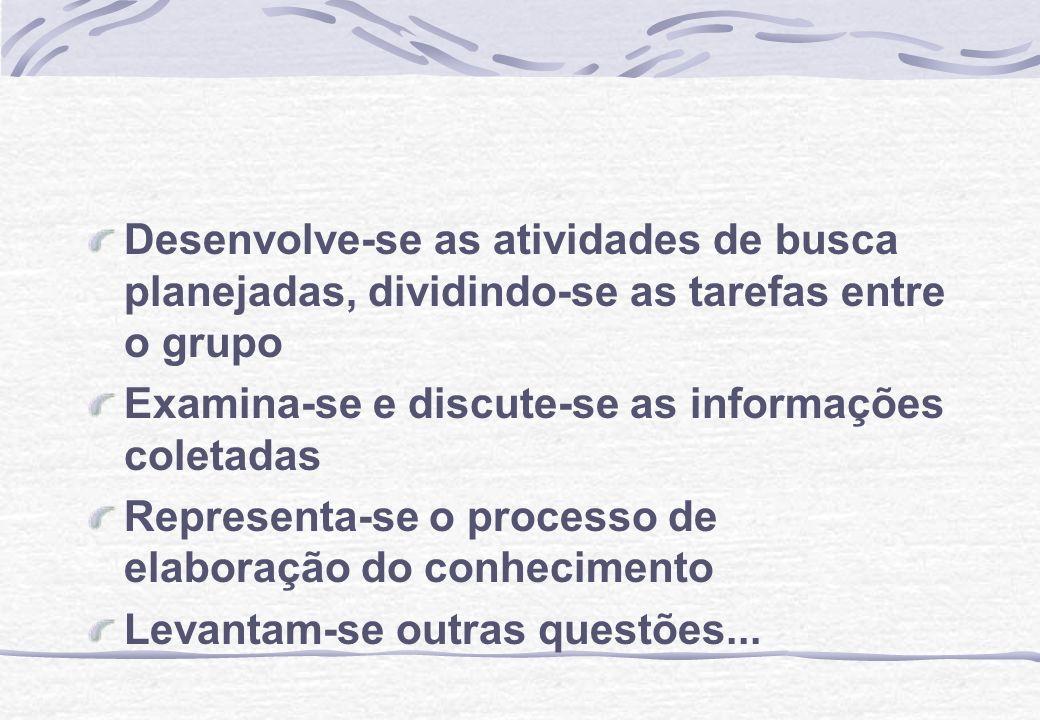 Desenvolve-se as atividades de busca planejadas, dividindo-se as tarefas entre o grupo Examina-se e discute-se as informações coletadas Representa-se