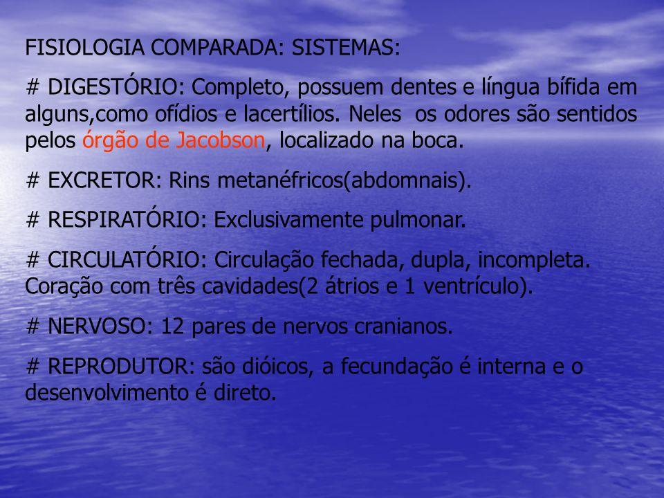 FISIOLOGIA COMPARADA: SISTEMAS: # DIGESTÓRIO: Completo, possuem dentes e língua bífida em alguns,como ofídios e lacertílios. Neles os odores são senti