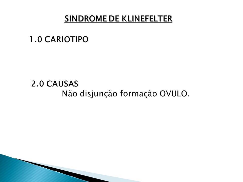 SINDROME DE KLINEFELTER 1.0 CARIOTIPO 2.0 CAUSAS Não disjunção formação OVULO.
