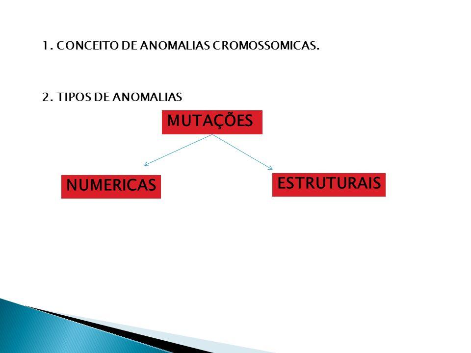 1. CONCEITO DE ANOMALIAS CROMOSSOMICAS. 2. TIPOS DE ANOMALIAS MUTAÇÕES NUMERICAS ESTRUTURAIS