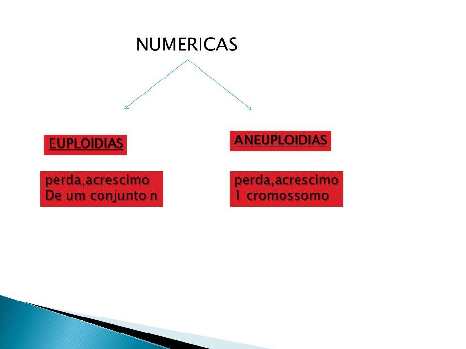 NUMERICAS EUPLOIDIAS ANEUPLOIDIAS perda,acrescimo De um conjunto n perda,acrescimo 1 cromossomo