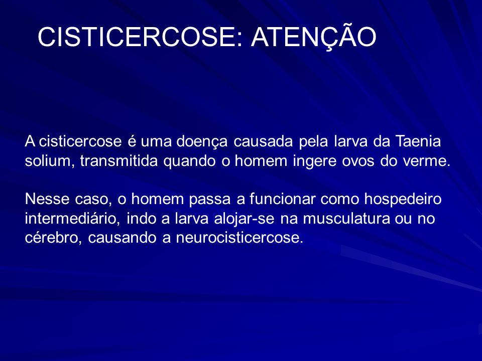 CISTICERCOSE: ATENÇÃO A cisticercose é uma doença causada pela larva da Taenia solium, transmitida quando o homem ingere ovos do verme.