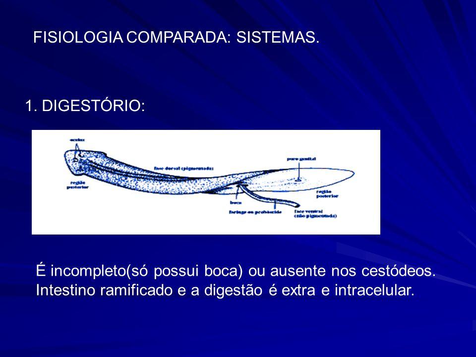 FISIOLOGIA COMPARADA: SISTEMAS.1.