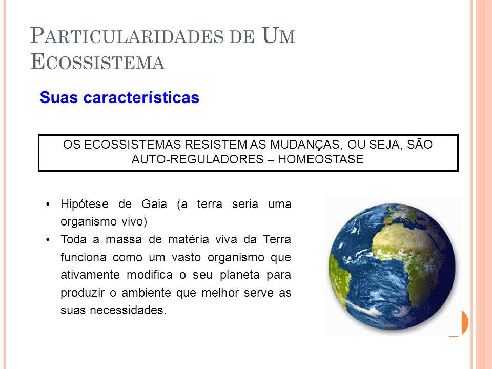 Suas características OS ECOSSISTEMAS RESISTEM AS MUDANÇAS, OU SEJA, SÃO AUTO-REGULADORES – HOMEOSTASE Hipótese de Gaia (a terra seria uma organismo vi