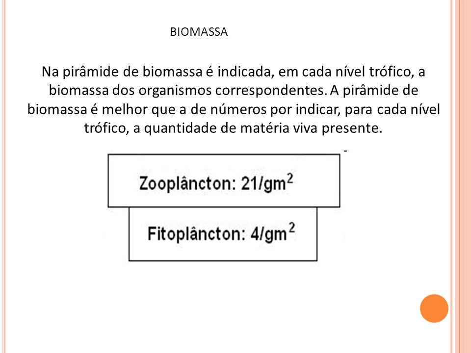 Na pirâmide de biomassa é indicada, em cada nível trófico, a biomassa dos organismos correspondentes. A pirâmide de biomassa é melhor que a de números