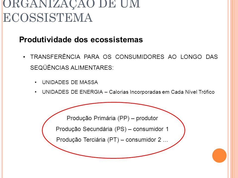 ORGANIZAÇÃO DE UM ECOSSISTEMA Produtividade dos ecossistemas TRANSFERÊNCIA PARA OS CONSUMIDORES AO LONGO DAS SEQÜÊNCIAS ALIMENTARES: UNIDADES DE MASSA
