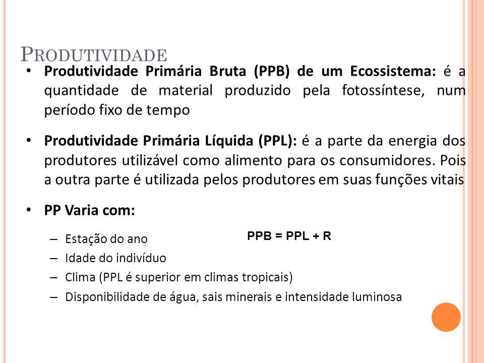P RODUTIVIDADE Produtividade Primária Bruta (PPB) de um Ecossistema: é a quantidade de material produzido pela fotossíntese, num período fixo de tempo