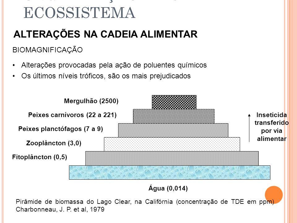 ORGANIZAÇÃO DE UM ECOSSISTEMA ALTERAÇÕES NA CADEIA ALIMENTAR BIOMAGNIFICAÇÃO Alterações provocadas pela ação de poluentes químicos Os últimos níveis t
