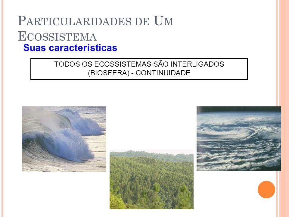 P ARTICULARIDADES DE U M E COSSISTEMA Suas características TODOS OS ECOSSISTEMAS SÃO INTERLIGADOS (BIOSFERA) - CONTINUIDADE