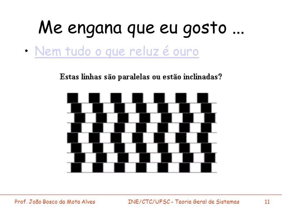 Prof. João Bosco da Mota AlvesINE/CTC/UFSC - Teoria Geral de Sistemas11 Me engana que eu gosto... Nem tudo o que reluz é ouro