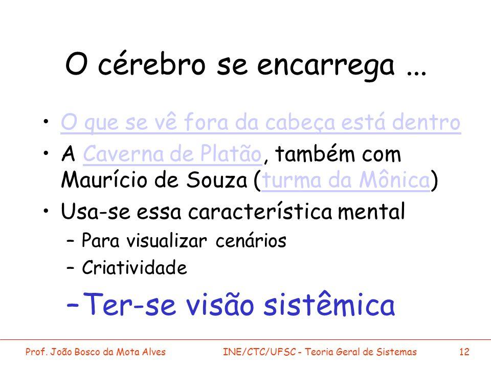 Prof. João Bosco da Mota AlvesINE/CTC/UFSC - Teoria Geral de Sistemas12 O cérebro se encarrega... O que se vê fora da cabeça está dentro A Caverna de