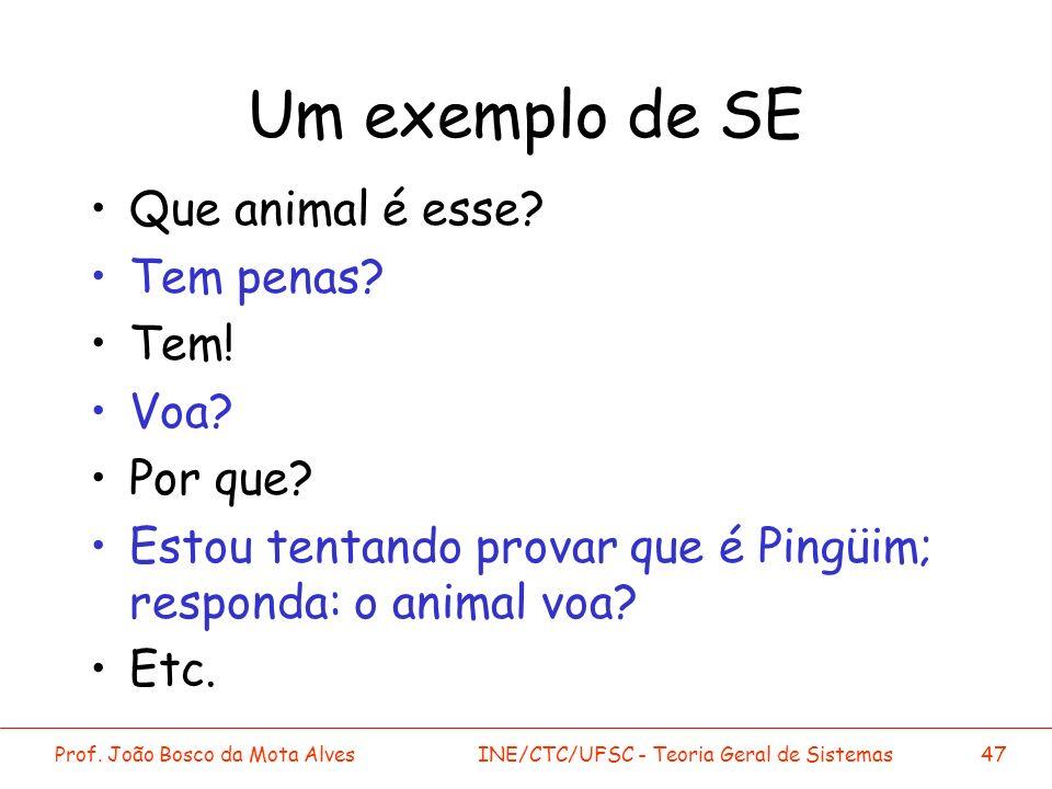 Prof. João Bosco da Mota AlvesINE/CTC/UFSC - Teoria Geral de Sistemas47 Um exemplo de SE Que animal é esse? Tem penas? Tem! Voa? Por que? Estou tentan