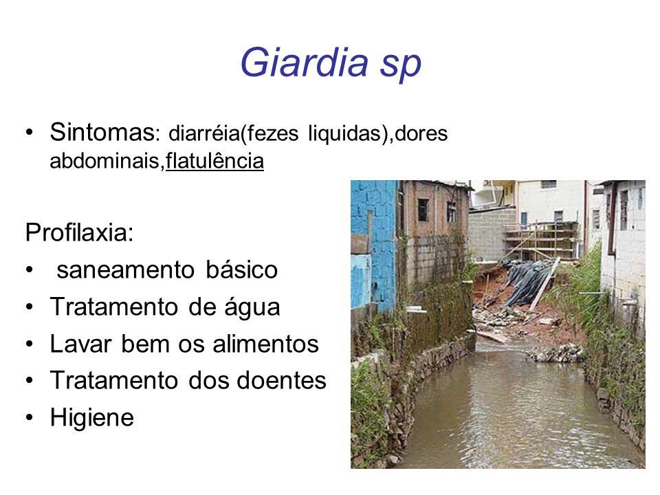 Giardia sp Sintomas : diarréia(fezes liquidas),dores abdominais,flatulência Profilaxia: saneamento básico Tratamento de água Lavar bem os alimentos Tr
