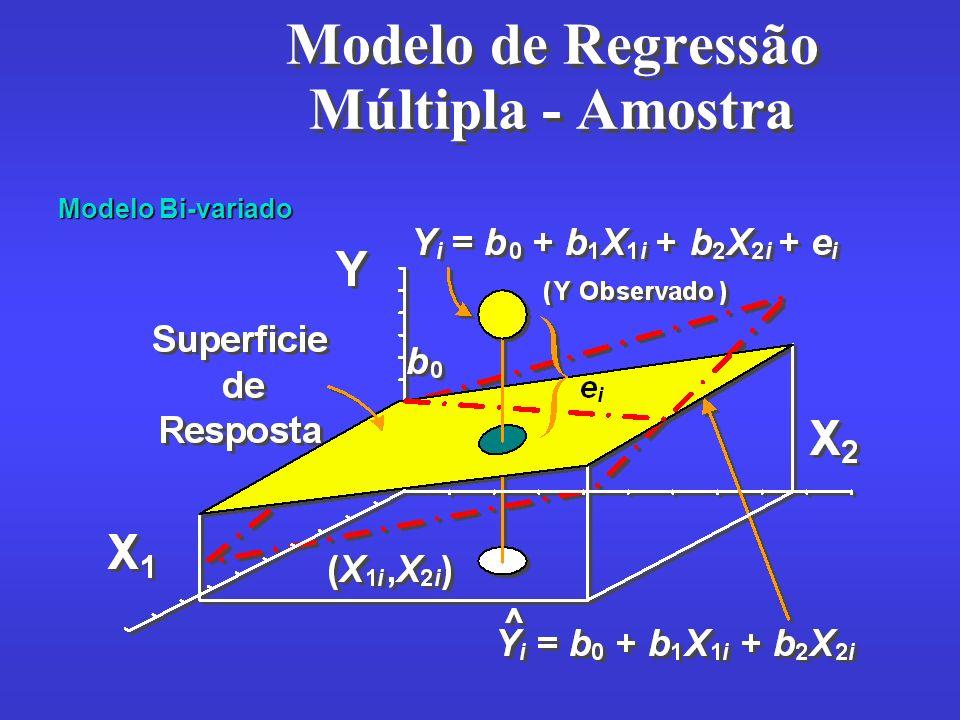 Modelo de Regressão Múltipla - Amostra Modelo Bi-variado